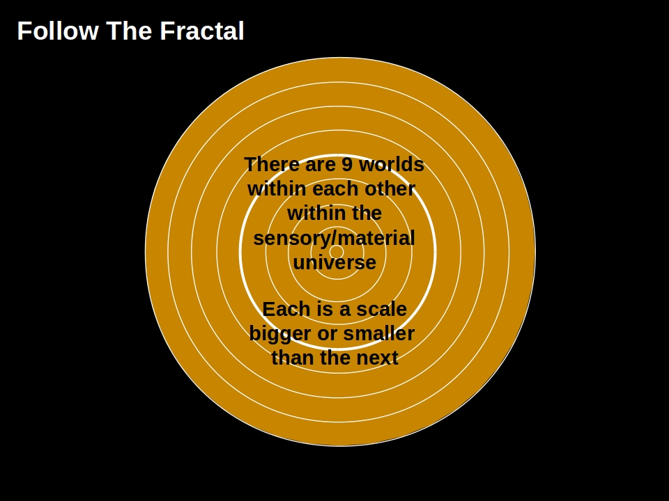 Follow The Fractal